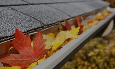 Fall Cleaning: Don't Forget Your Windows!