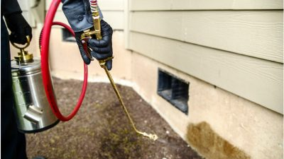 5 Pre-Winter Pest Control Tips For Homeowners