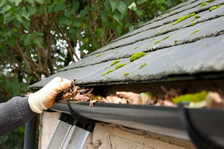 roofing and gutter cleaning