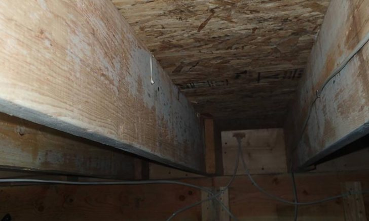 Cleaning Wood Joist in Crawl Space with Mold