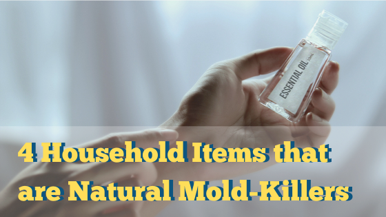 4 Household Items that are Natural Mold-Killers