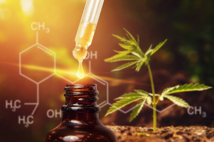 5 Delicious CBD Oil Recipes Anyone Can Master