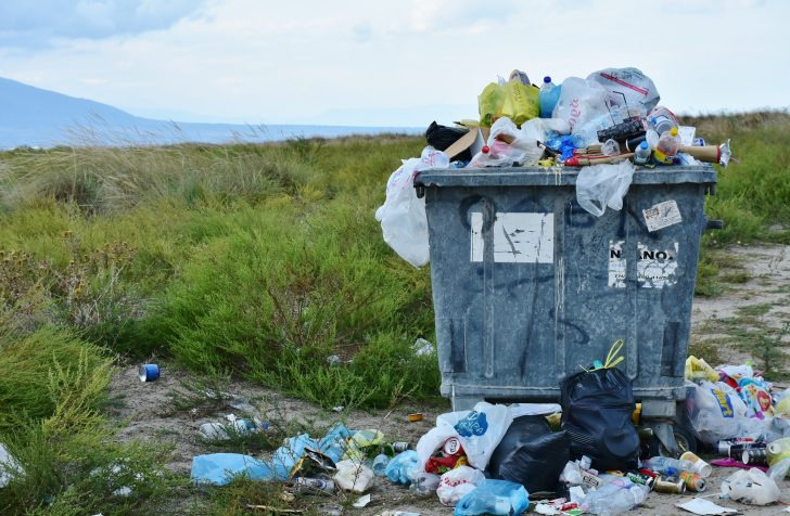 Do Not Throw Away! 5 Items That Should Never Be in the Bin