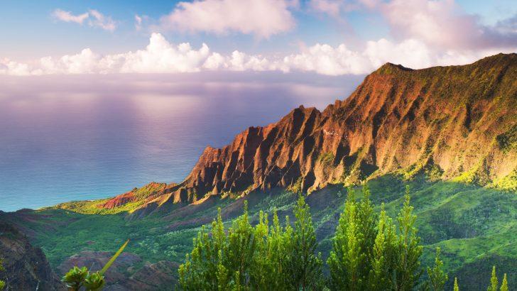 The Simple Life on Kauai