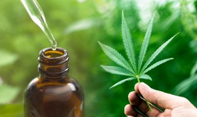 Five Ways The CBD Industry Is Improving Sustainability And Improving The Environment