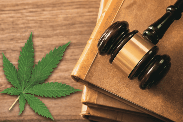Legal CBD: Here's How to Buy it safely online