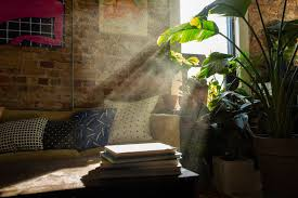 Indoor Air Quality of Your Living Space