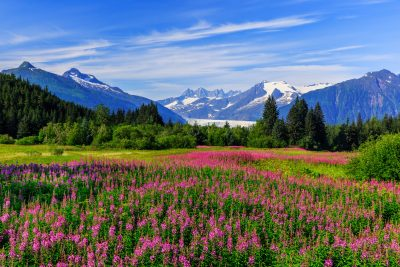 The 5 Best Things to Do in Alaska
