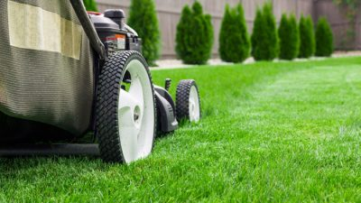Lawn Mowing Tips for Effective Lawn Care