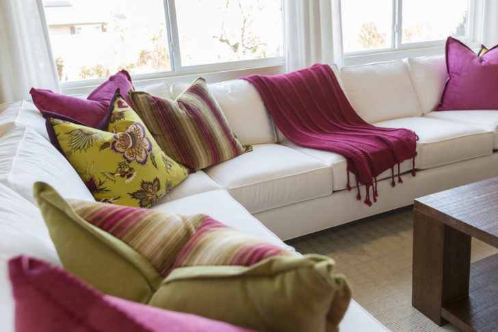 how to kill bed bugs in couch