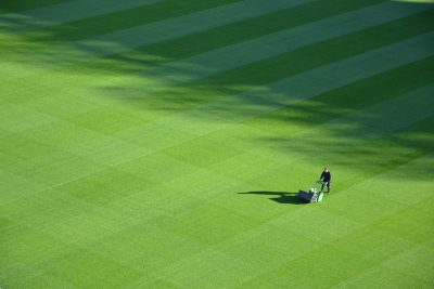 5 Tips For Lawn Care Maintenance