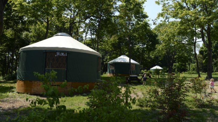 Where to Go Camping in Massachusetts?