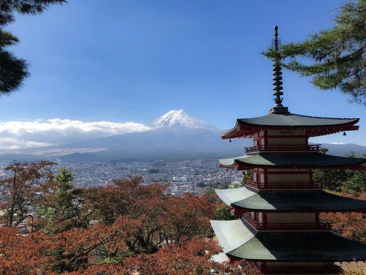 5 Things To Do in Japan