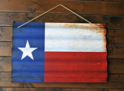 5 Things to Do While Visiting Texas