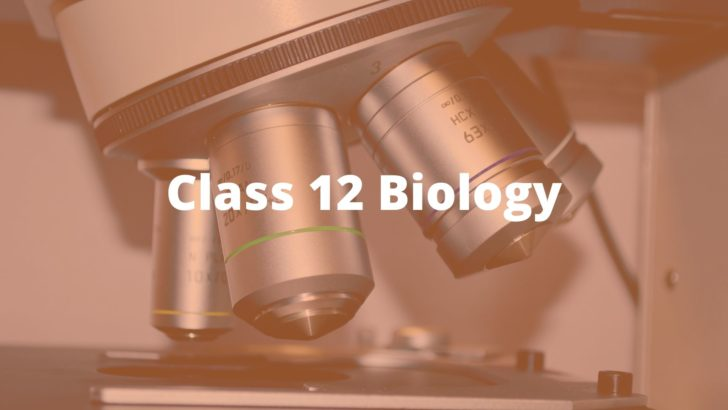 Ramp up your Boards Preparation with NCERT Solution for Class 12 Biology