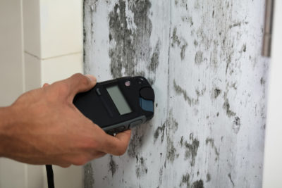 Mold inspection routines