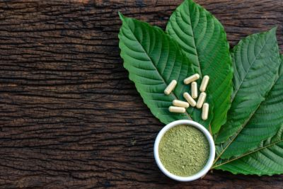 Kratom vs Cbd – Learn the Differences and Similarities Between the Two