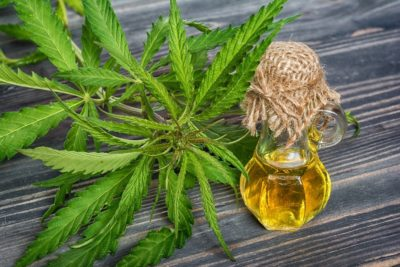 Does Amazon Sell CBD Oil? Where to Find the Best Online CBD Sellers