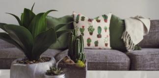 Decor Ideas for a Small Apartment