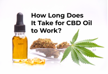 take for CBD oil to work