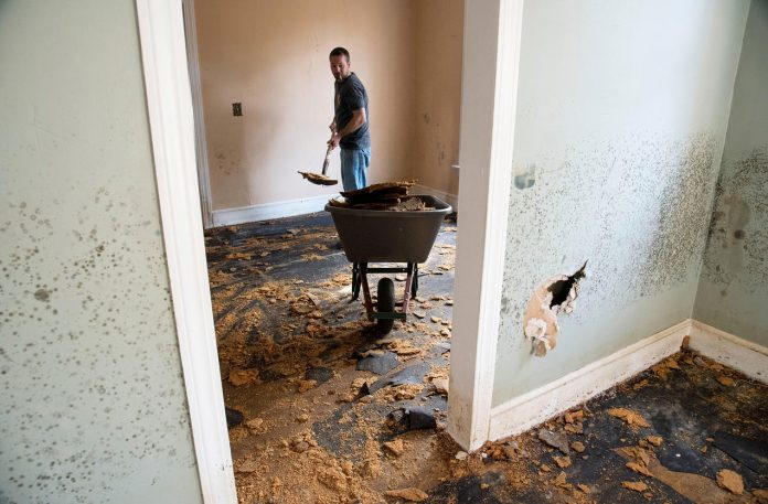 Damp Away: Protecting Your House from Water Damage