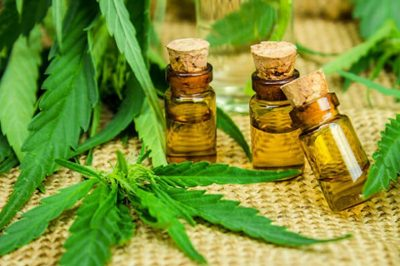 How Much CBD Oil Is Too Much?