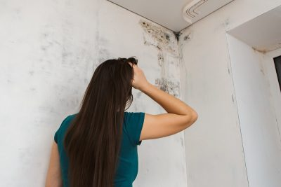 5 Ways to Identify Mold in Your Home