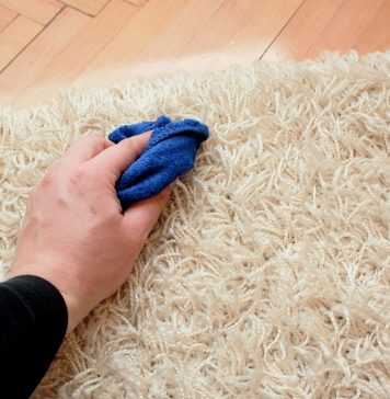 tips to remove carpet stains