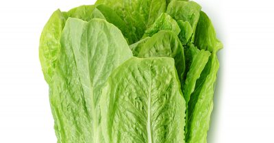 Is Lettuce Keto?