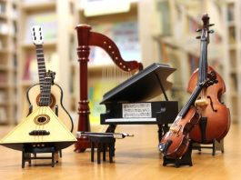 Best Instruments to Learn