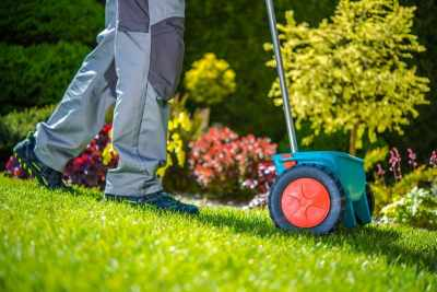 maintaining a beautiful yard