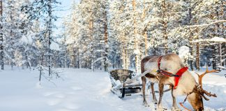 Best travel places to visit in December