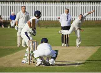 The Fundamentals of Cricket Betting and Strategies to Win