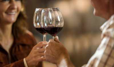 Discover The Best Wine Destination in Mexico