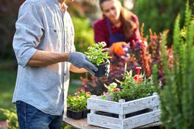 Save Time and Money With These Amazing Gardening Tips