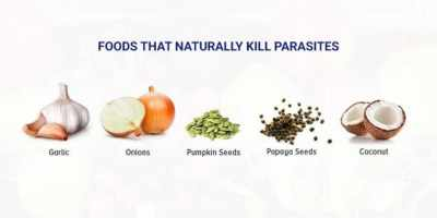 Foods That Kill Parasites