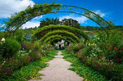 Augers In Garden