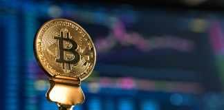 Success of Bitcoin