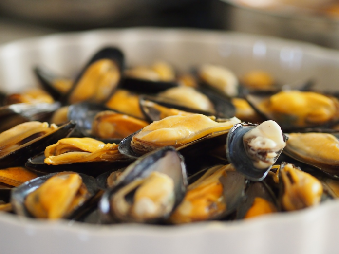 Eat Clams, Mussels, and Other Shellfish