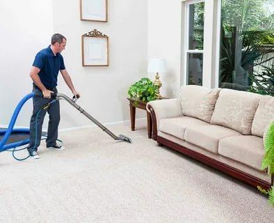 Best Carpet Cleaners in Novi