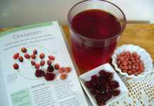 Is Ocean Spray Cranberry Juice Good for You to Drink?
