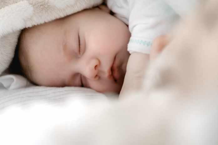 Baby Sleep Training Elements